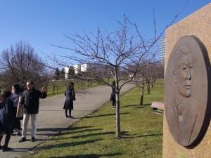 杉原千畝を記念して桜が植樹されたNeris川河岸
